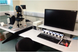 leica sp5 confocal microscope